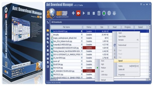 Ant Download Manager Pro 1.19.6 Beta Full Crack & Full Version